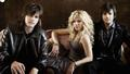 The Band Perry | Peterson Strobe Tuners